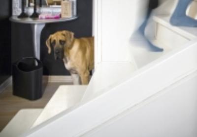 Schody wewnętrzne: rodzaje schodów do domu