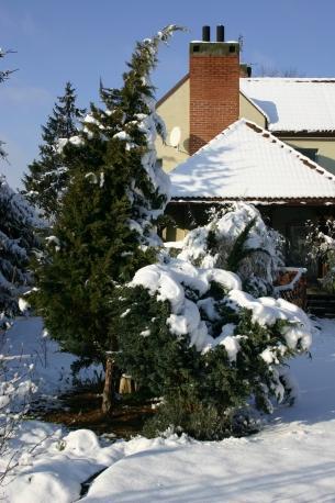 Zimowe porządki w ogrodzie